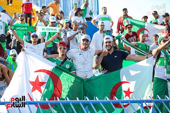 جماهير الجزائر (26)