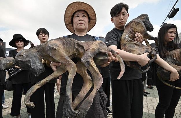 مظاهرات فى كرويا الجنوبية ضد تناول لحوم الكلاب (4)