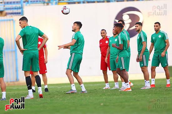 الجزائر (16)