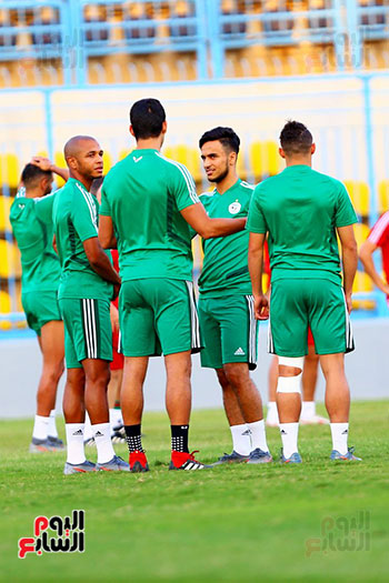 الجزائر (22)