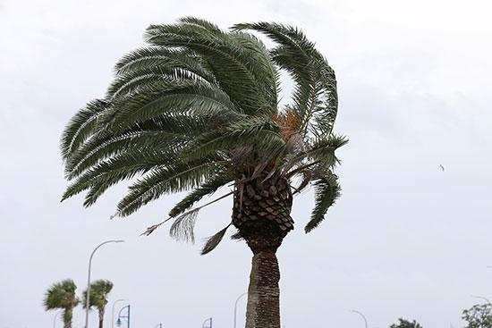 الإعصار بارى يضرب نيو أورليانز الأمريكية (3)
