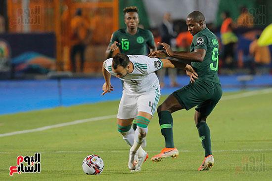 الجزائر ونيجيريا (31)