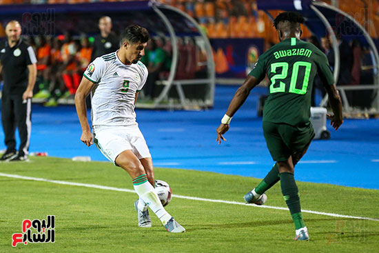 الجزائر ونيجيريا (13)