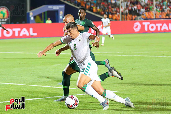 الجزائر ونيجيريا (47)
