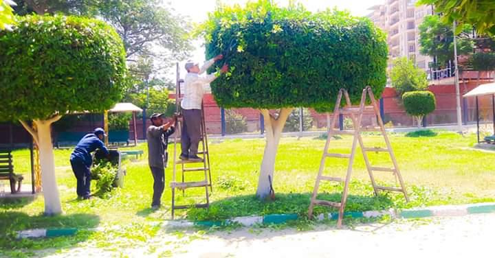رفع كفاءة حدائق شجرة الدر والمجزر (5)