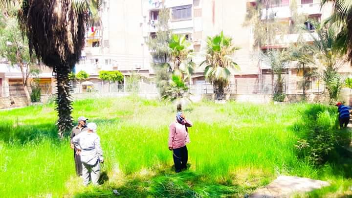 رفع كفاءة حدائق شجرة الدر والمجزر (4)
