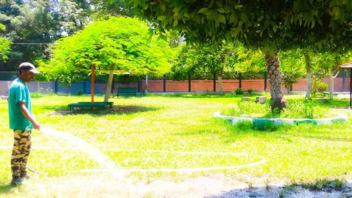 رفع كفاءة حدائق شجرة الدر والمجزر (6)