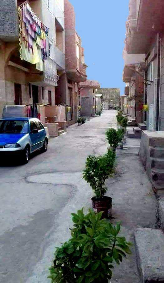 تجميل وتطوير الشارع (1)