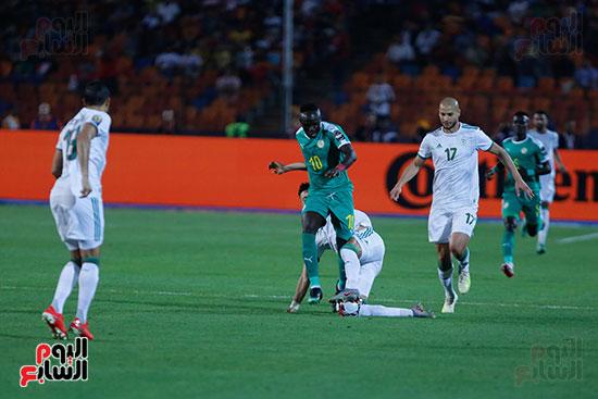 الجزائر والسنغال (24)