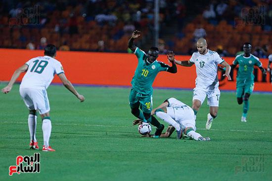 الجزائر والسنغال (25)