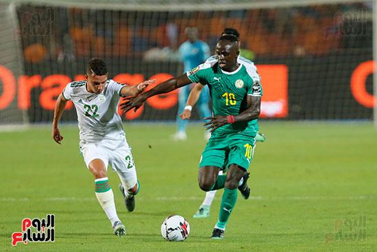 الجزائر والسنغال (29)
