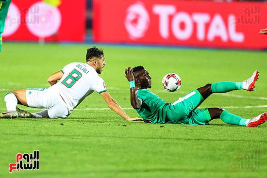 الجزائر والسنغال (20)