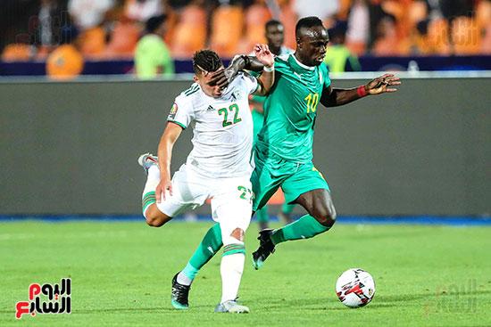 الجزائر والسنغال (7)