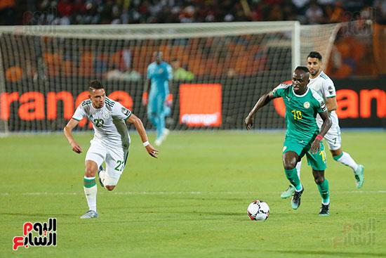 الجزائر والسنغال (28)