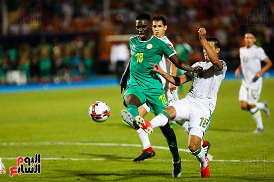 الجزائر والسنغال (36)