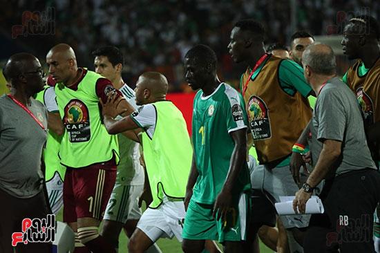 الجزائر والسنغال (14)