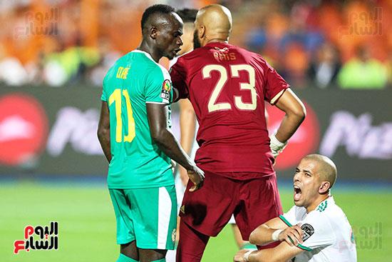 الجزائر والسنغال (13)