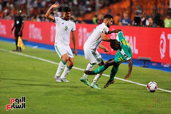 الجزائر والسنغال (31)