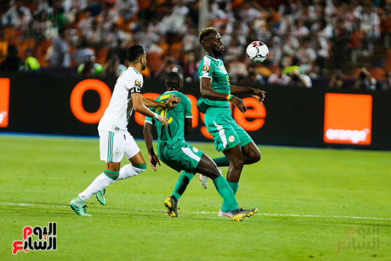 الجزائر والسنغال (35)