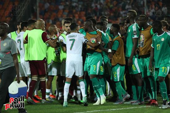 اشتباكات لاعبى الجزائر والسنغال  (3)