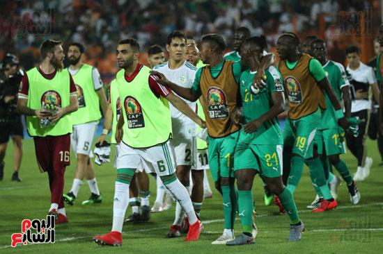 اشتباكات لاعبى الجزائر والسنغال  (1)
