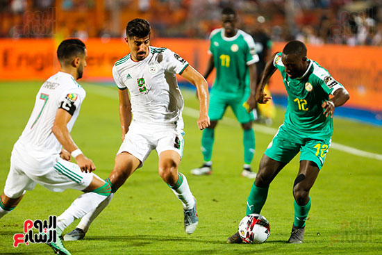 الجزائر والسنغال (32)