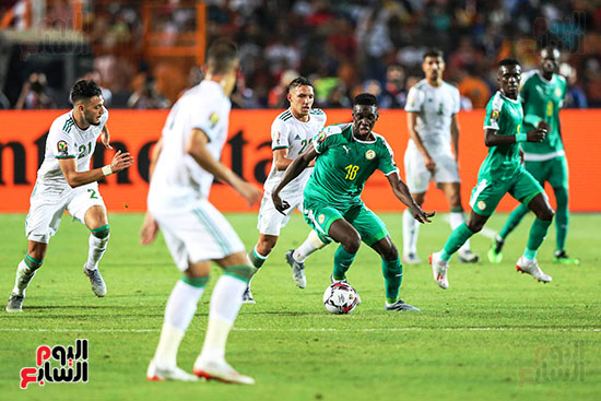 الجزائر والسنغال (16)