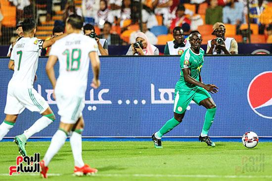 الجزائر والسنغال (19)