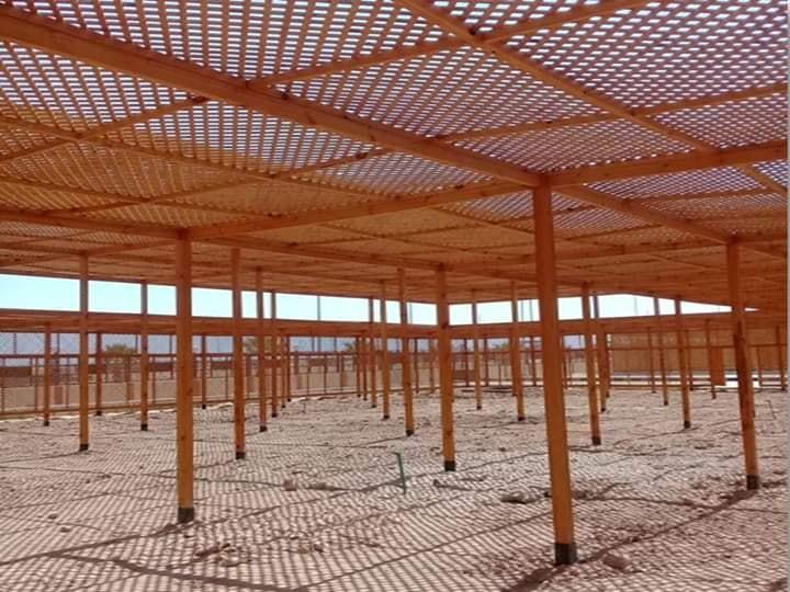طفرة معمارية وتركيبة فنية ساحرة ترسم مدينة طيبة الجديدة أول مدينة بطراز عالمي (26)