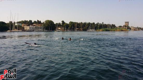 السباحة-فى-النيل-والترع-خلال-فصل-الصيف-بأسوان-(4)