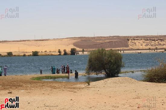السباحة-فى-النيل-والترع-خلال-فصل-الصيف-بأسوان-(6)
