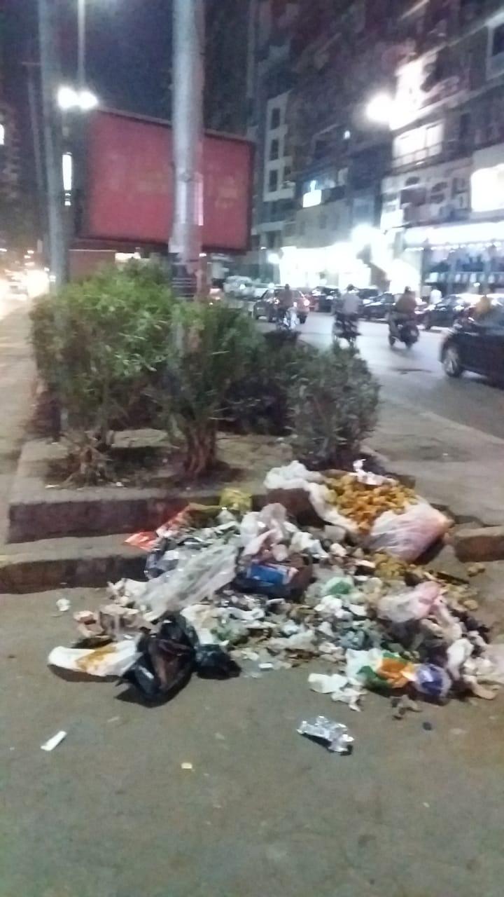 القمامة فى شارع البطل