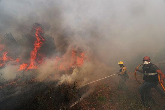 رجال الإطفاء خلال محاولتهم السيطرة على النيران