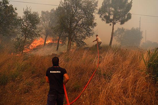 حرائق الغابات فى البرتغال