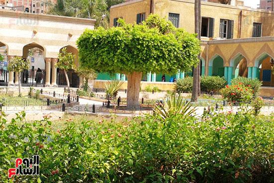 مستشفى حميات المحلة (16)