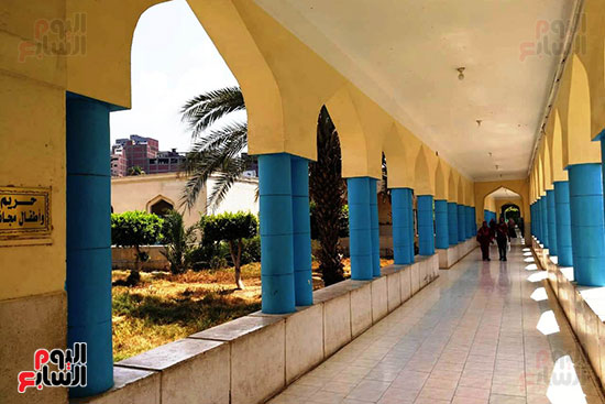 مستشفى حميات المحلة (11)