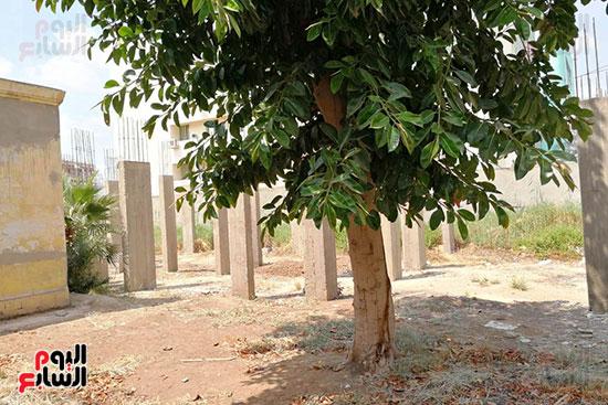 مستشفى حميات المحلة (15)
