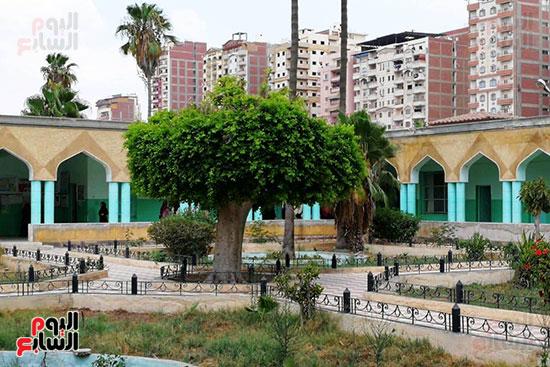 مستشفى حميات المحلة (8)
