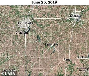 Current satellite image
