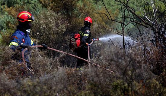 رجال الإطفاء ومحاولة السيطرة على الحرائق