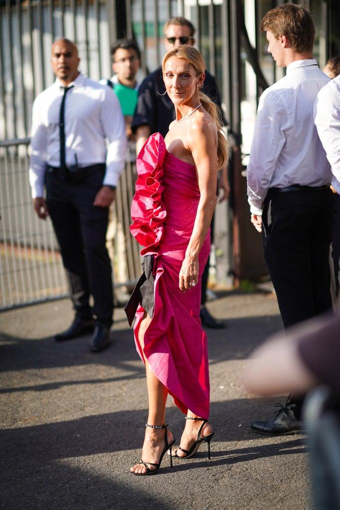 Celine Dion (8)