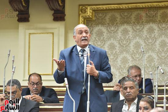 الجلسة العامة لمجلس النواب (14)
