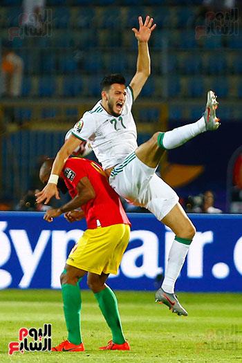 الجزائر وغينيا 0 (36)