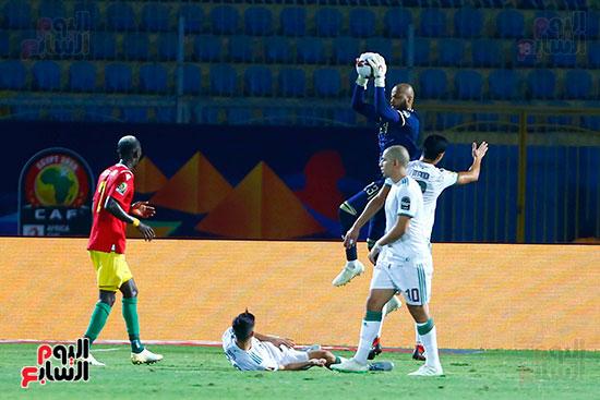 الجزائر وغينيا 0 (10)