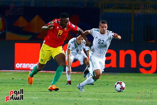 الجزائر وغينيا 0 (4)