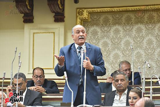 مجلس النواب (13)