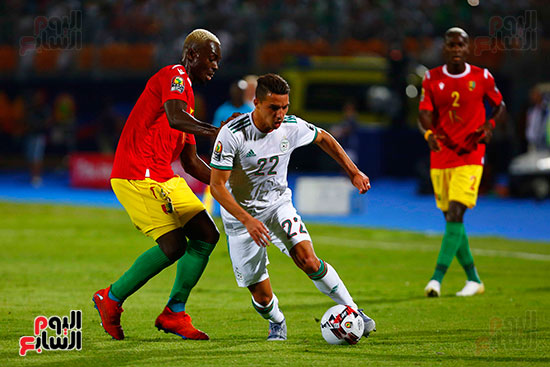الجزائر وغينيا 0 (34)