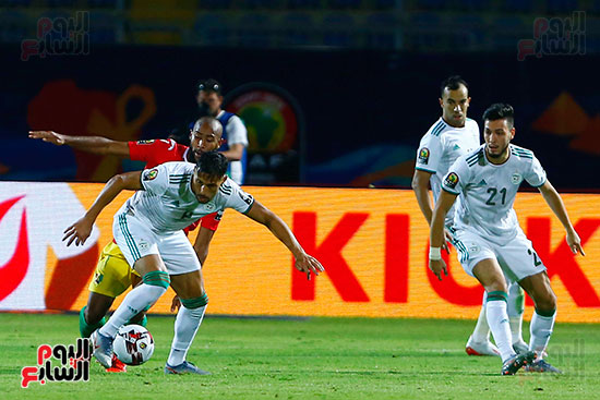 الجزائر وغينيا 0 (30)