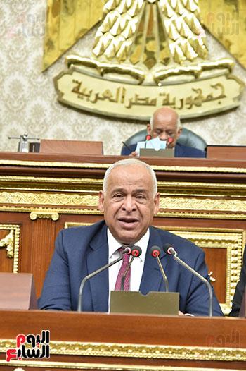 مجلس النواب (29)