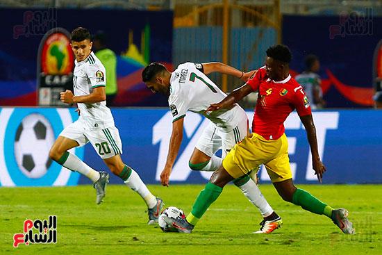 الجزائر وغينيا 0 (13)